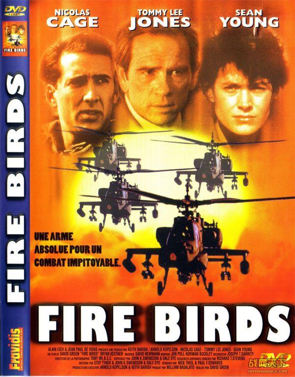 火鸟出击(Fire Birds)海报