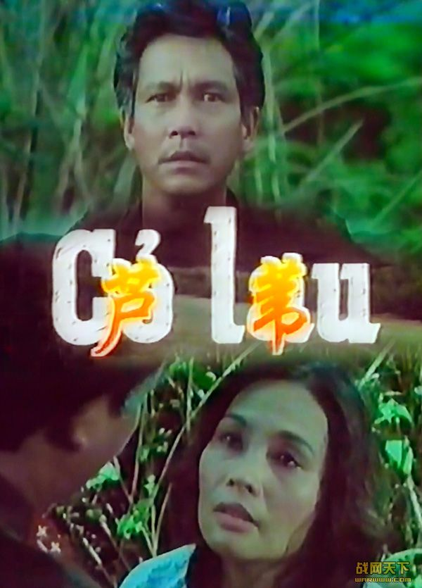 芦苇(CO LAU)海报