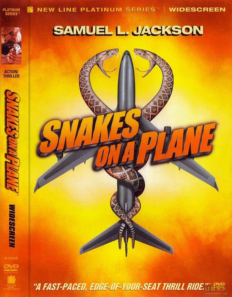 空中蛇灾/航班蛇患